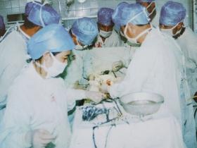 同种异体肾脏移植手术